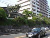 Photo_1064
