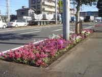 Photo_682