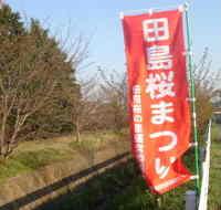 Photo_771