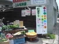 Photo_990